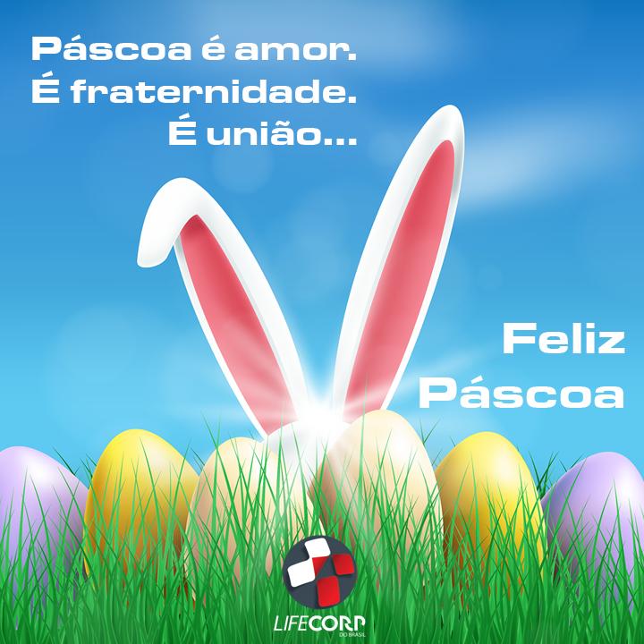 57575329 1512533158884051 1563009865406742528 n - A vida só pode ser definida pelo amor, e o amor pela vida…. Feliz Páscoa! #sos #vida #emergencia #pascoa #felizpascoa